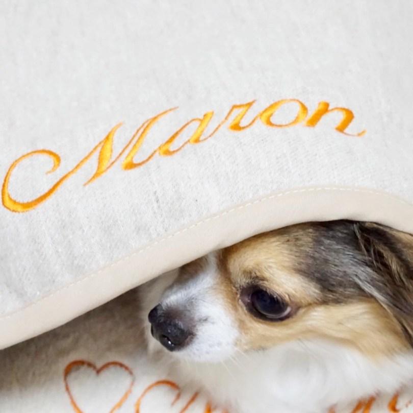 ネーム刺繍 犬の洗える日本製ベッド:ロイヤルベッド - アンベルソ