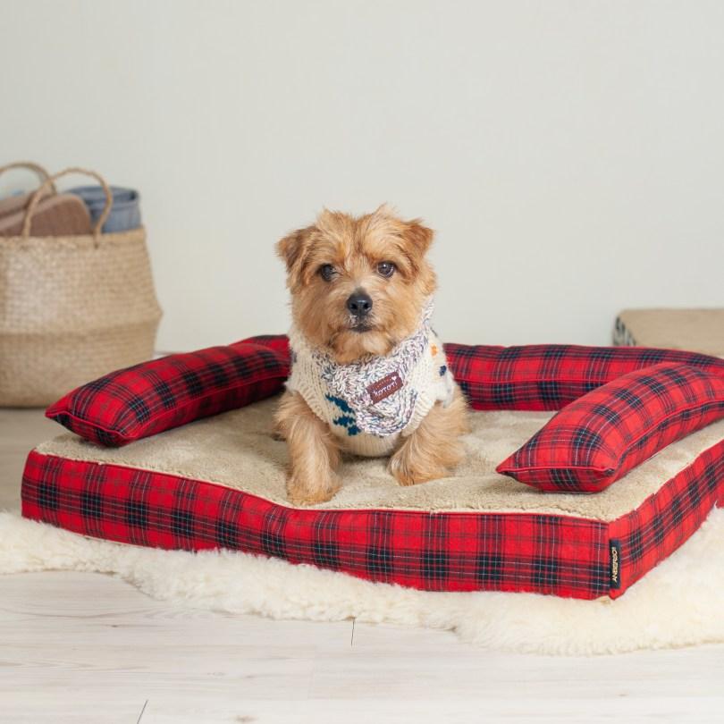 ベッドカバー「ビビアン」 犬の洗える日本製ベッド:ロイヤルベッド - アンベルソ