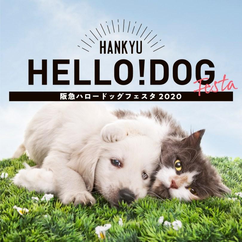 阪急ハロードッグフェスタ2020 『愛犬愛猫とのBEAUTY&HEALTH』開催!