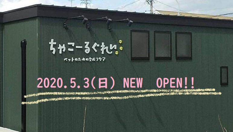 取扱店舗「ちゃこーるぐれい」愛知県 犬のベッド:アンベルソ