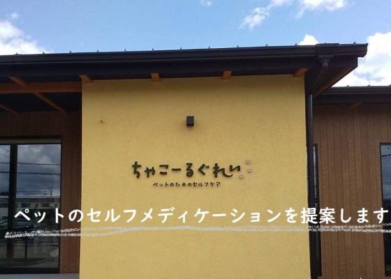 取扱店舗「ちゃこーるぐれい」愛知県|犬のベッド:アンベルソ