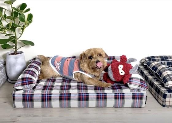 クッション付きベッドカバー:エリー|犬のベッド:アンベルソ