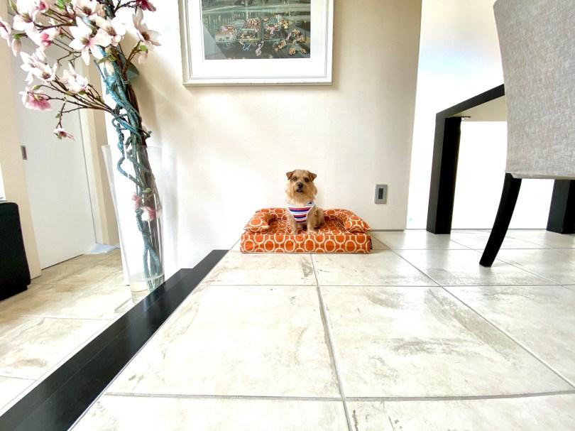 クッション付きベッドカバー:エルモ(ブリック)|犬のベッド:アンベルソ