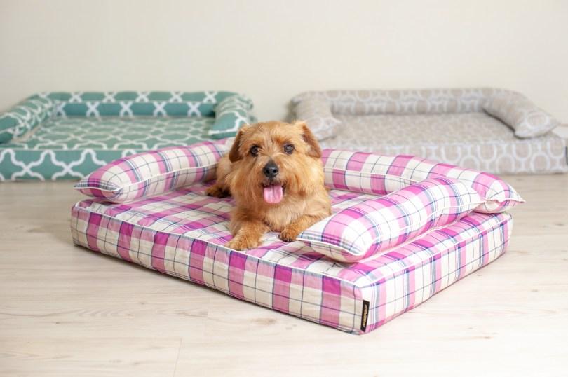 クッション付きベッドカバー:リン|犬のベッド:アンベルソ