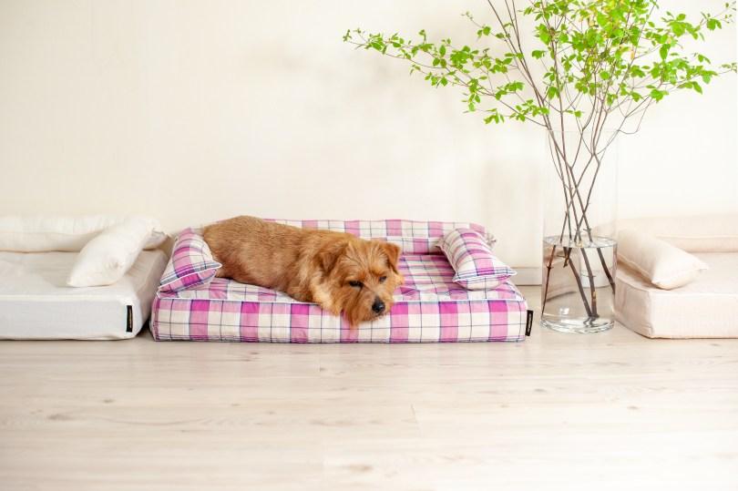 クッション付きベッドカバー:リン 犬のベッド:アンベルソ