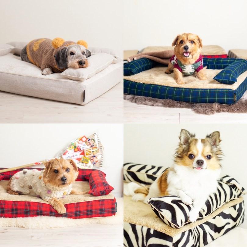 冬の定番商品 犬のベッド:アンベルソ