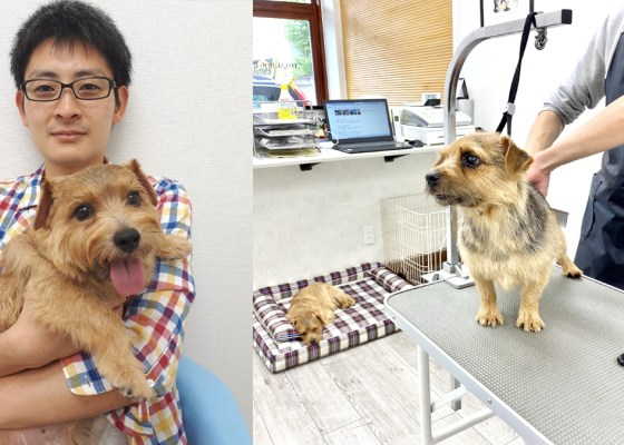 犬のスキンケア:ゲスト対談|犬のベッド:アンベルソ