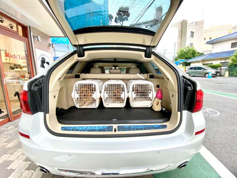 ロイヤルベッド本体(ダブルクッション) for リッチェル製キャンピングキャリー 犬のベッド:アンベルソ