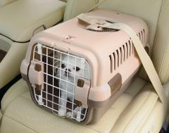 キャンピングキャリー - リッチェル(Richell) 犬のベッド:アンベルソ