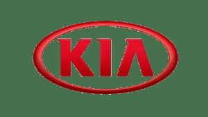 We fix Kia vehicles