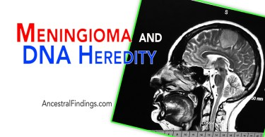 Meningioma and DNA Heredity