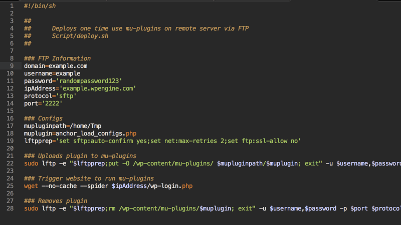 Injecting a custom mu-plugin for FTP deployments on WP Engine