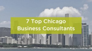 7 top Chicago Business Consultants