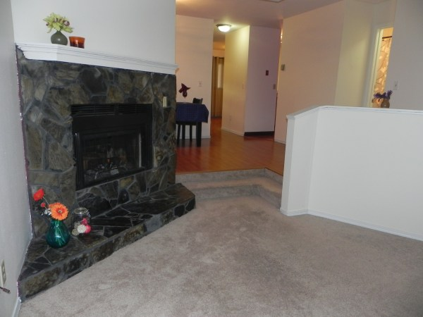 Corner Stone Wood Burning Fireplace