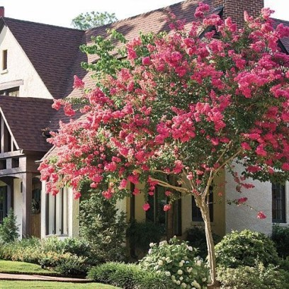 Beautiful Flower Garden for Your Front Yard 28