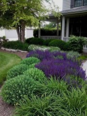 Beautiful Front Yard Landscaping Ideas On A Budget 42