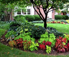 Clever & Beautiful Yard Island Landscaping for Backyard and Front yard 23