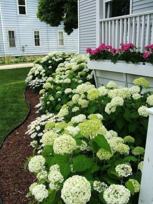 Easy And Low Maintenance Front Yard Landscaping Ideas 06
