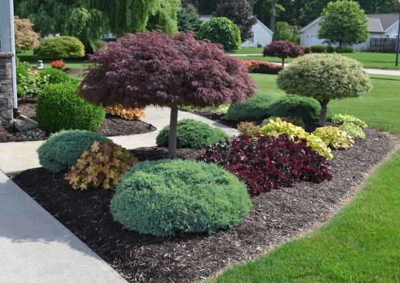 Examples Landscaping Ideas You can Put in House Page 29