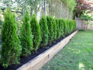 Amazing Privacy Fence Ideas to Perfect Your Backyard 23