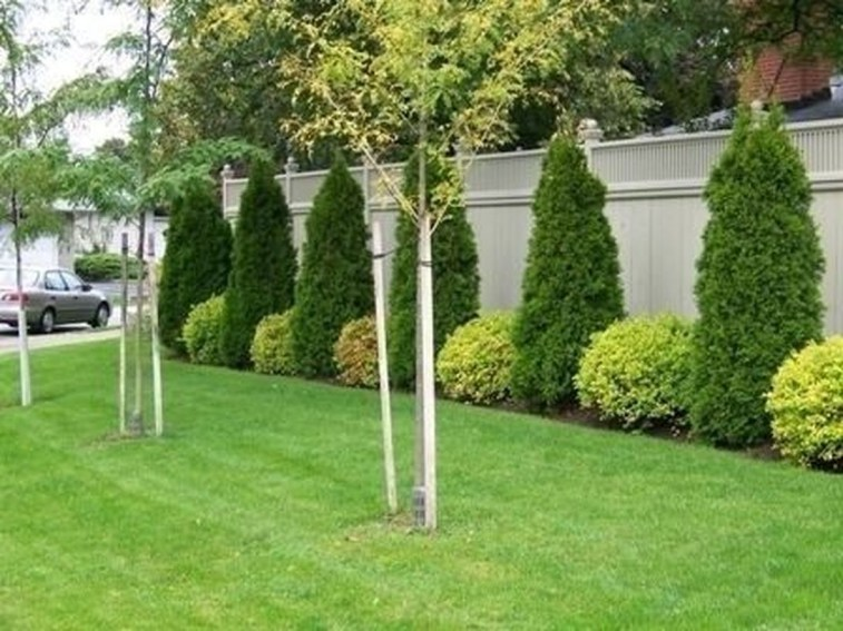 Amazing Privacy Fence Ideas to Perfect Your Backyard 28
