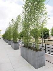 Amazingly Creative Long Planter Ideas for Your Patio 02