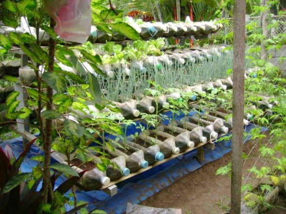Amazingly Creative Long Planter Ideas for Your Patio 15