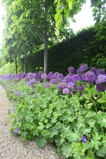 Amazingly Creative Long Planter Ideas for Your Patio 26
