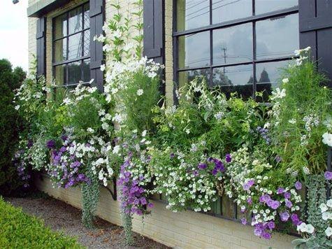 Amazingly Creative Long Planter Ideas for Your Patio 51