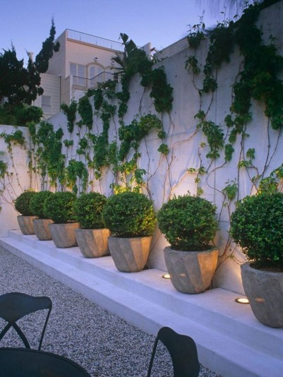 Amazingly Creative Long Planter Ideas for Your Patio 53