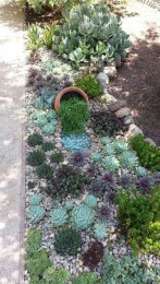 Awesome Gardening Ideas on Low Budget 23