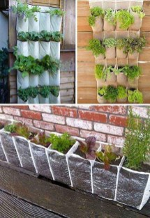 Awesome Gardening Ideas on Low Budget 34