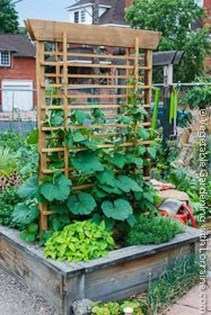 Cool DIY Garden Trellis Ideas 14