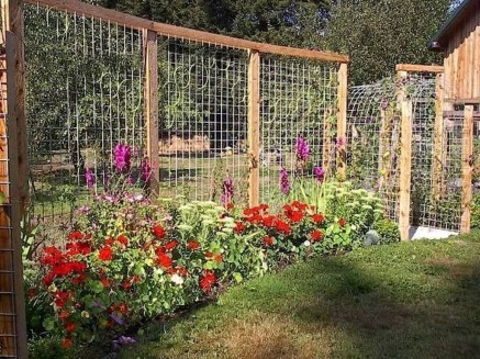 Cool DIY Garden Trellis Ideas 35