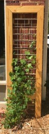 Cool DIY Garden Trellis Ideas 46