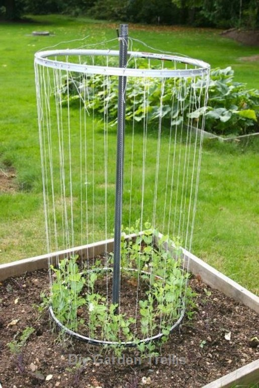 Cool DIY Garden Trellis Ideas 50