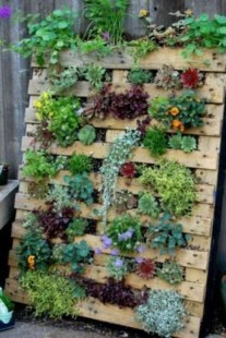 Cool DIY Vertical Garden for Front Porch Ideas 04