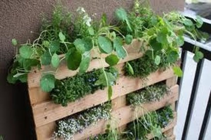 Cool DIY Vertical Garden for Front Porch Ideas 33