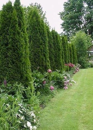 Landscaping Front Yard Ideas to Beautify Your Garden Design 39
