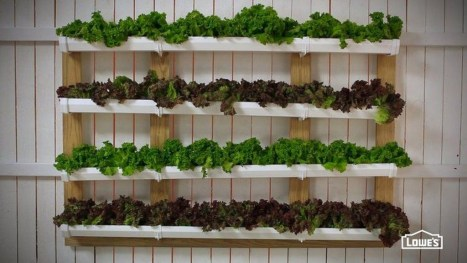 Stunning DIY Vertical Garden Design Ideas 13