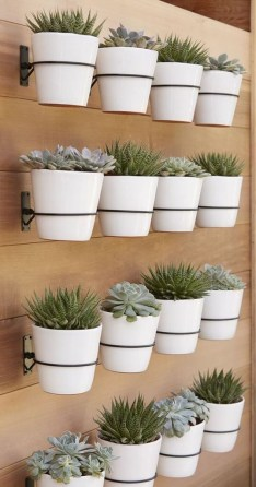 Stunning DIY Vertical Garden Design Ideas 24