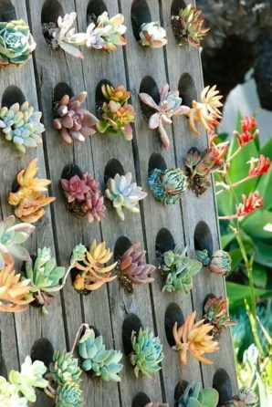 Stunning DIY Vertical Garden Design Ideas 26