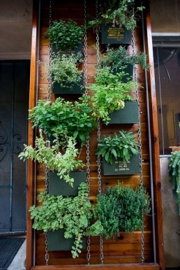 Stunning DIY Vertical Garden Design Ideas 35