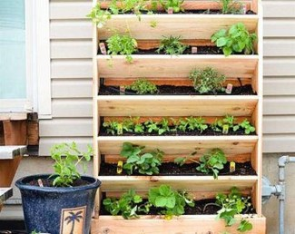 Stunning DIY Vertical Garden Design Ideas 37