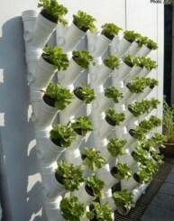 Stunning DIY Vertical Garden Design Ideas 40