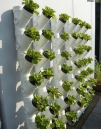 Stunning DIY Vertical Garden Design Ideas 40