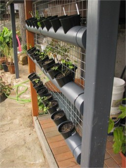 Stunning DIY Vertical Garden Design Ideas 44
