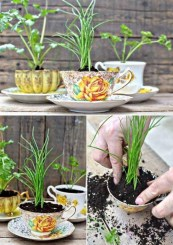 Cheap DIY Garden Ideas Everyone Can Do It 13