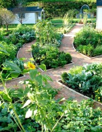 Clever Gardening Ideas with Low Maintenance 13