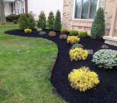 Gardening Tips- Maintenance Landscaping Front yard 09
